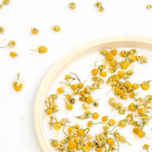cursus aromatherapie